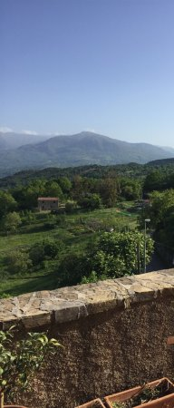 B & B La Zizzania e il Mandarino: photo1.jpg