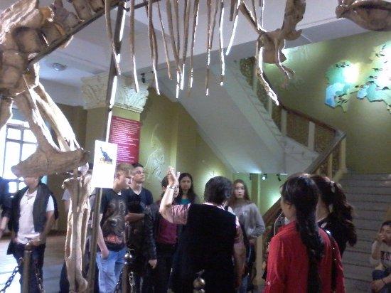 Archeology Museum: экскурсия в зале археологии
