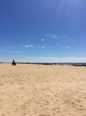 Kitty Hawk Kites Hang Gliding School : Ocean side of the sand dune for kite flying activity.