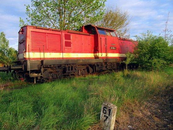 Meyenburg, Tyskland: Diesellok V 100 der DR im Garten
