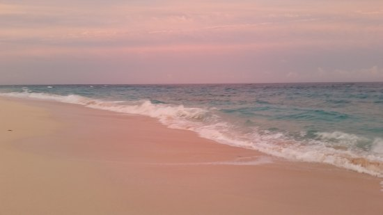 Clairfont Apartments : Warwick Long Bay at sunset - pink sand and pink sky