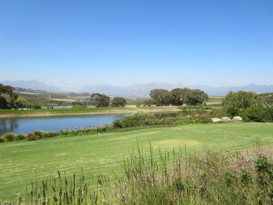 Jordan Wine Estate: Most wonderful view