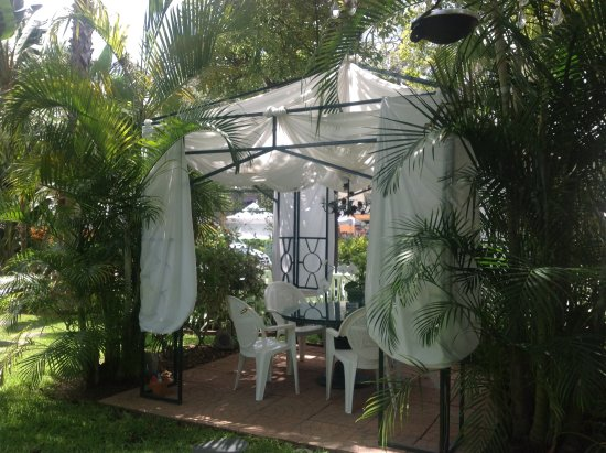 Meranova Guest Inn: You can have breakfast sat under the gazebo.