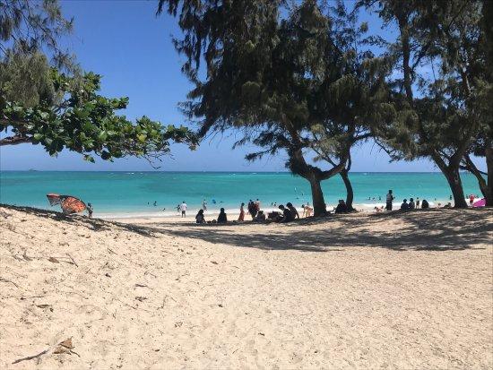 Kailua Beach Park 사진
