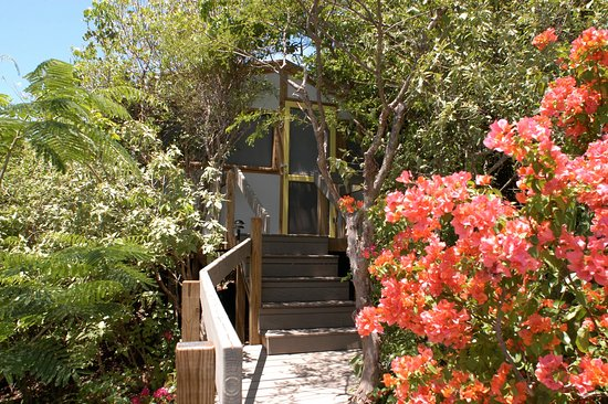 Water Island, St. Thomas: Exterior Cottage