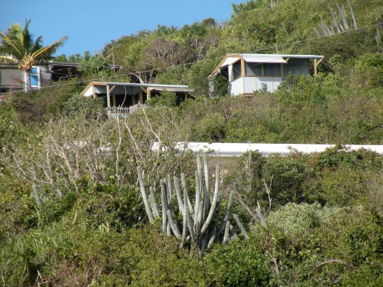 Water Island, St. Thomas: Cottages from Limestone Beach
