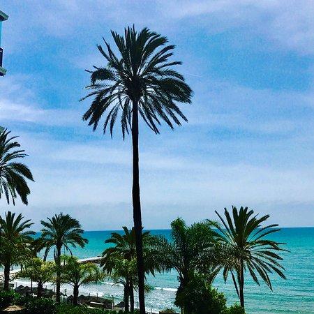Aparthotel Puerto Azul Marbella: photo2.jpg