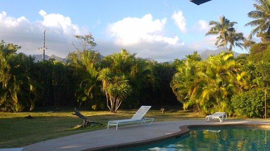 木瓜天堂家庭式旅館照片