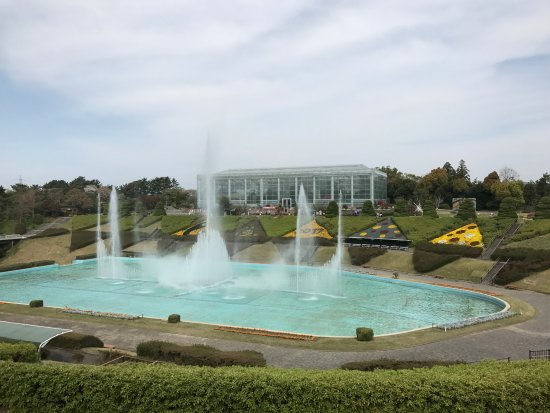 Hamamatsu Flower Park: Fountain in the middle of the park