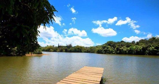 Cidra, Porto Rico: Lake View