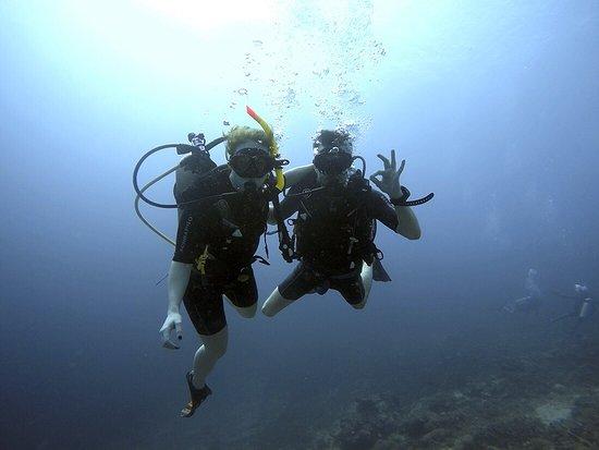 Picture of manta dive gili air gili air - Manta dive gili air ...