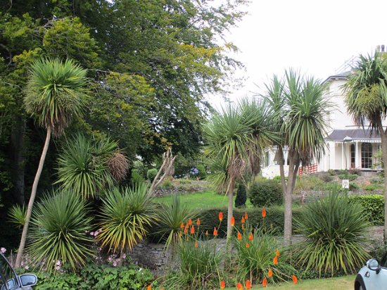 Haytor Hotel: Beautiful palm tree lined gardens