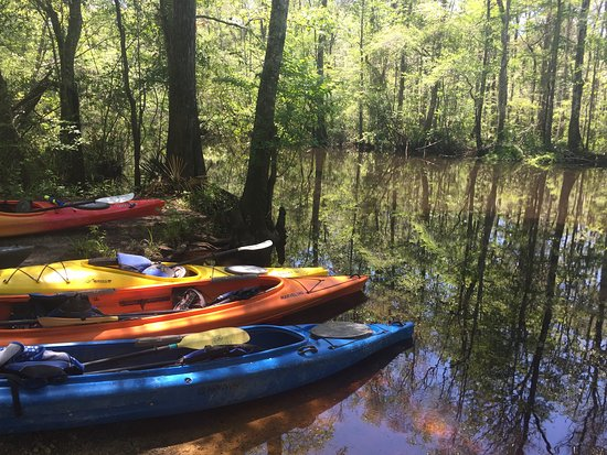 Nature Adventures Outfitters : Kayaks were clean and ready to go!