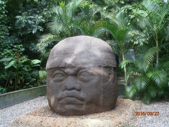 Foto De Parque Museo La Venta Villahermosa: Foto De Parque Museo La Venta, Villahermosa: Cabeza Olmeca