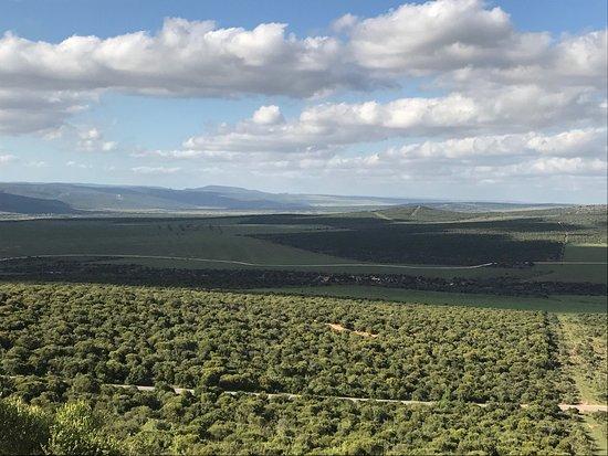 Addo Elephant National Park, Sør-Afrika: photo8.jpg