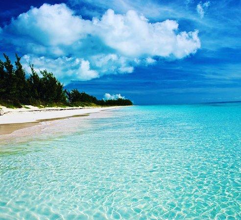 Bimini Water Sports: photo0.jpg