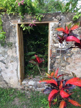 Frederiksted, St. Croix: Very cool old historical buildings along with the beautiful flowers.