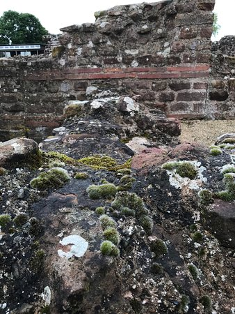 Wroxeter, UK: photo2.jpg