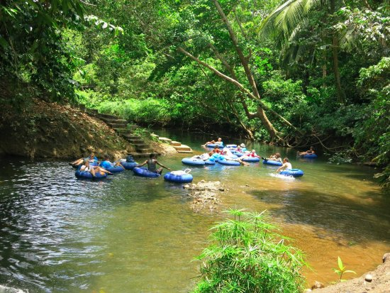 Marigot, Dominica: Rivertubing on Pagua river by Hibiscus Valley