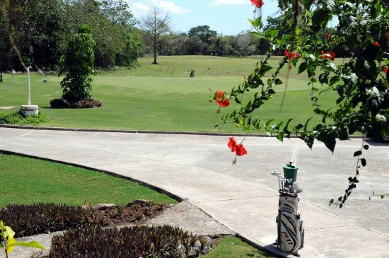 Cozumel Country Club : GOLF COURSE VIEW FROM CAFE