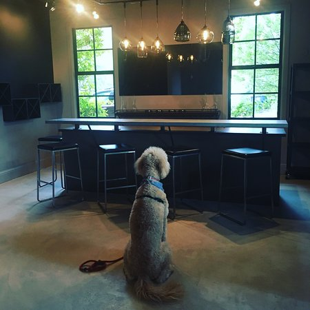 Philo, CA: Right before we opened the tasting room! IG @sandwichthedoodle