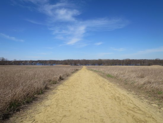 Delran, Nueva Jersey: trail through field--no shade !