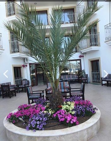Pasa Garden Beach Hotel : photo9.jpg
