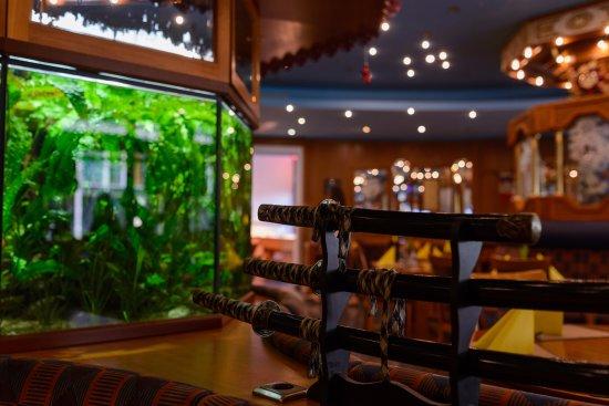 5 Sterne China Restaurant: Das Aquarium ist eine kleine Attraktion!