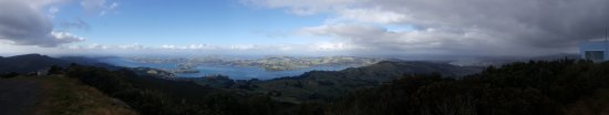 Otago Peninsula: View of the Otago Harbour and Peninsula from Mount Cargill