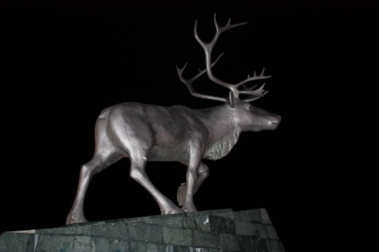 Sculpture Reindeer