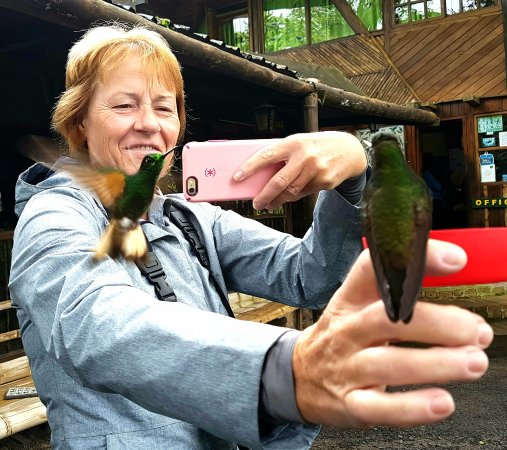 Tandayapa, Ekuador: birdwatching is easy