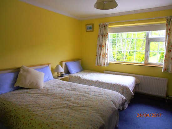 Larkfield House : Twin bedded room with private toilet and shower facilities . Tea/Coffee, TV Radio and free WiFi