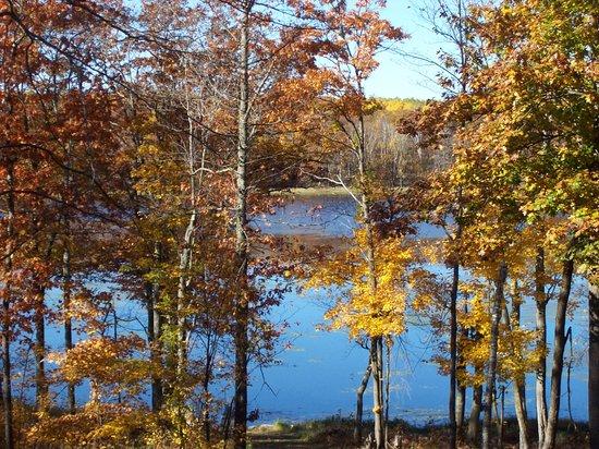 Pequot Lakes, Minnesota: Private natural lake 