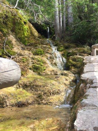 Nacimiento Del Rio Cuervo : photo2.jpg
