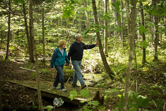 Harbor Springs, MI: On-site hiking/snowshoe trails