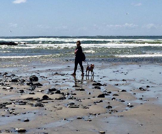 Yachats coastline: photo0.jpg