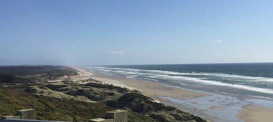 Yachats coastline: photo4.jpg