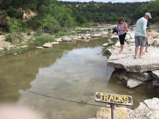 Dinosaur Valley State Park: Checking out the tracks