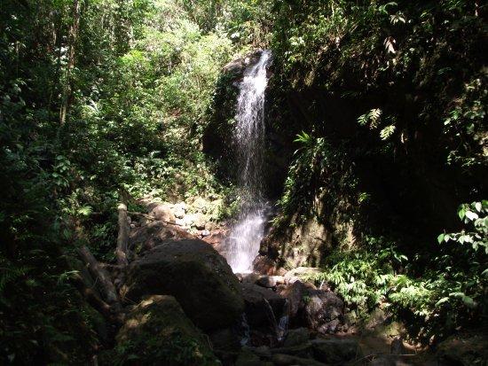 Parque Nacional Cerro Azul Meambar