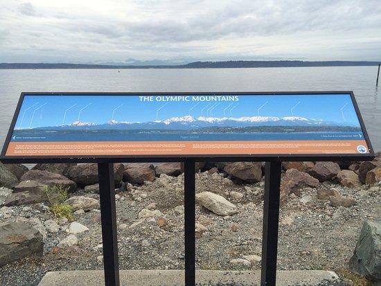 Edmonds, WA: Marina Beach Park Southern point & Picnic bench location too.