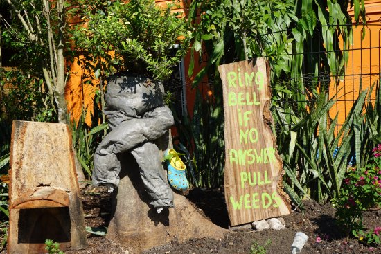 Iguana Junction: Owners have a great sense of humor!