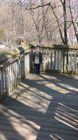 Erie Zoo Photo