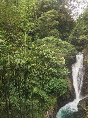 Gitgit Waterfall: photo1.jpg