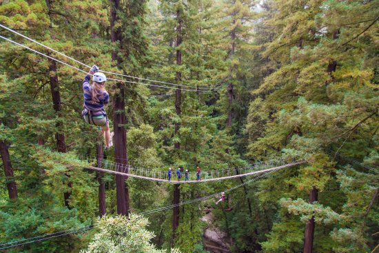 Mount Hermon, Kalifornien: 6 Ziplines and 2 Sky Bridges!