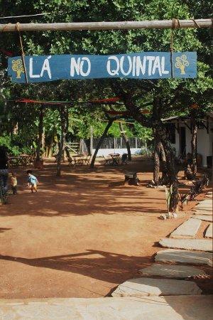 Lá no Quintal