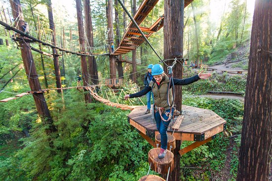 Mount Hermon, CA: Aerial obstacles that are challenging and fun!