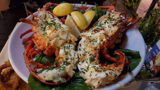Big Lobster Picture Of Nick S Seafood Restaurant Sydney