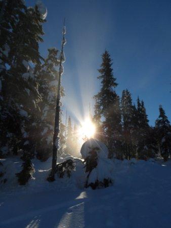 Mount Washington, Canadá: snow shoe area