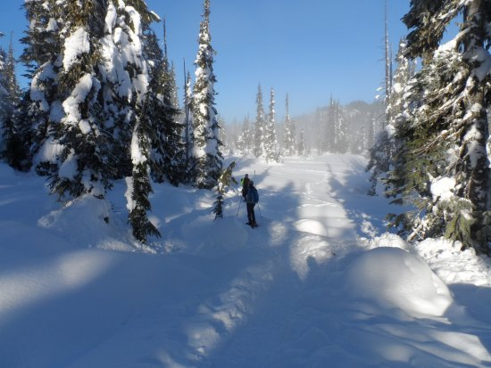 Mount Washington, Canada: snow shoe area