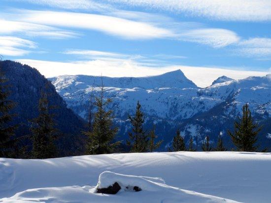 Mount Washington, Canada: snow shoe area